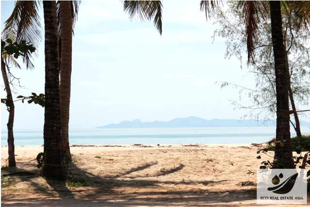 land-in-thailand-land-for-sale-koh-samuio